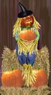 <img:http://www.elfpack.com/stuff/Scarecrow!SM.jpg>