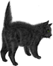 <img:http://www.elfpack.com/stuff/blackcat_scaredX-SM.png>